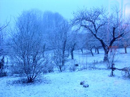 Neige à Tours en Savoie