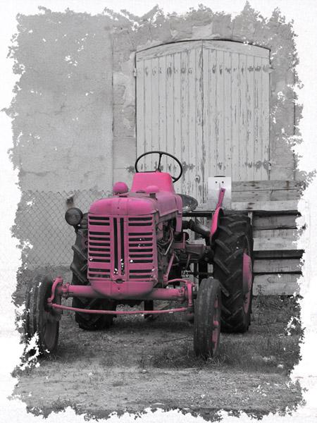 Un tracteur sur le chenal de la Seudre